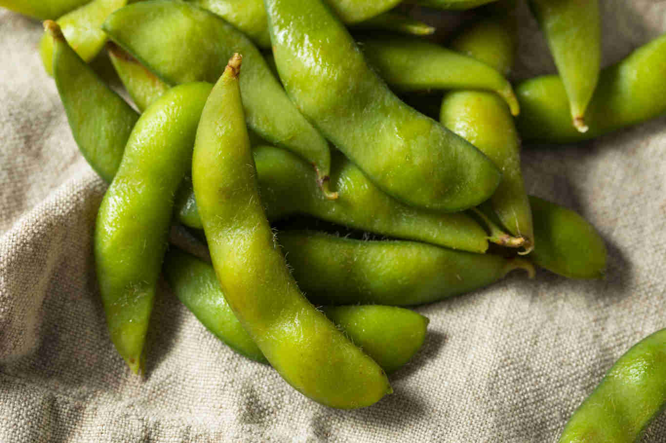 Raw Green Organic Edamame Soy Beans Ready to Eat
