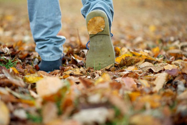 male-shoes-walking